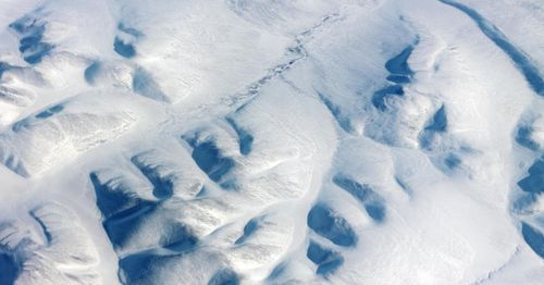 Scientists report 24,000-year-old microscopic animal found alive in permafrost