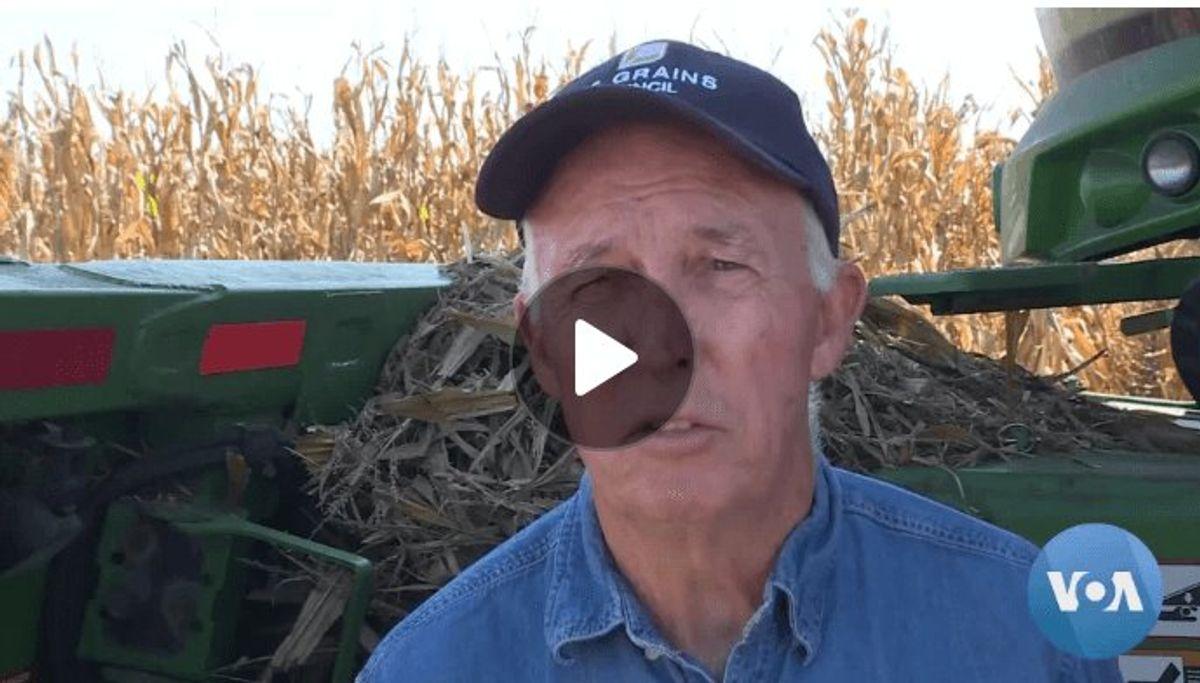 Illinois Farmers Voice Support for Trump Despite Hardships