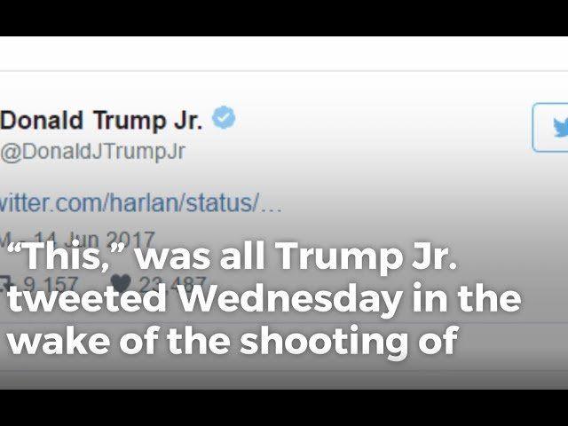 Donald Trump Jr. Makes Simple Statement Against Glorifying Violence