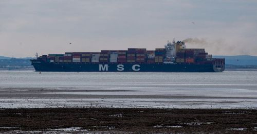 Massive cargo ship gets wedged in Suez Canal, cause cargo ship backup