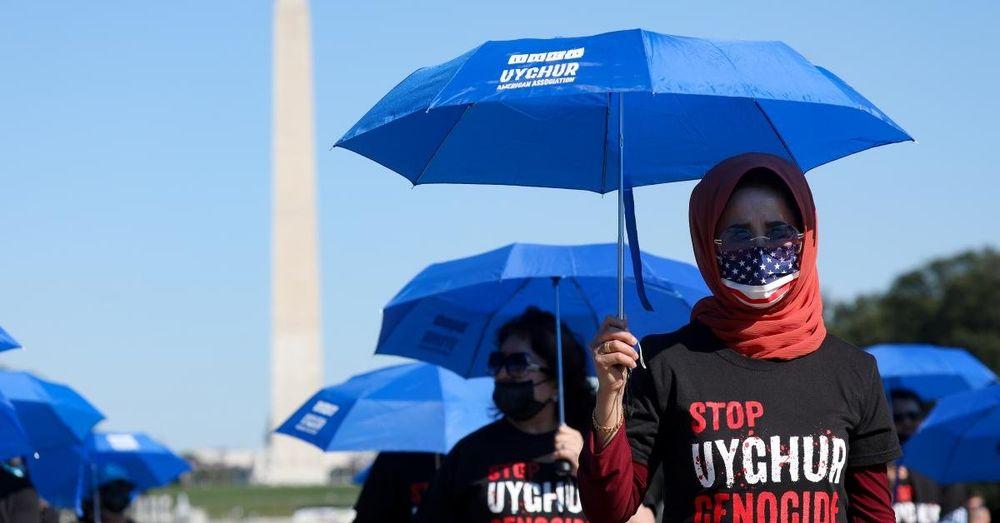 Muslim countries too intimidated by China to decry Uyghur abuse,ex-Trump ambassador says