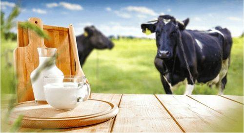 Farewell Dairy, Pass The Pea Milk Please