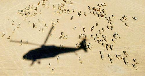 'Black Hawk Down' pilot announces campaign for Alabama Senate seat