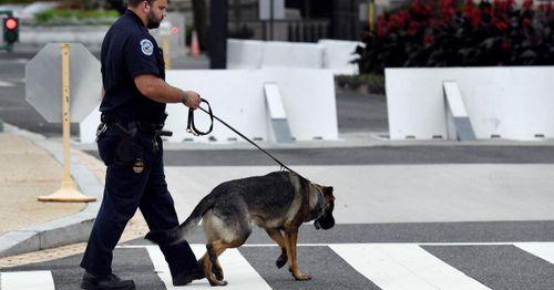 FBI investigating police K9 attack on black man during arrest