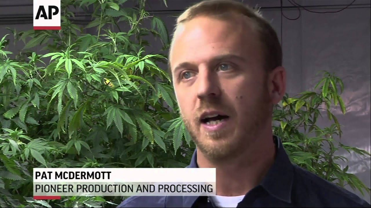 Wash. growers struggle with glut of legal pot