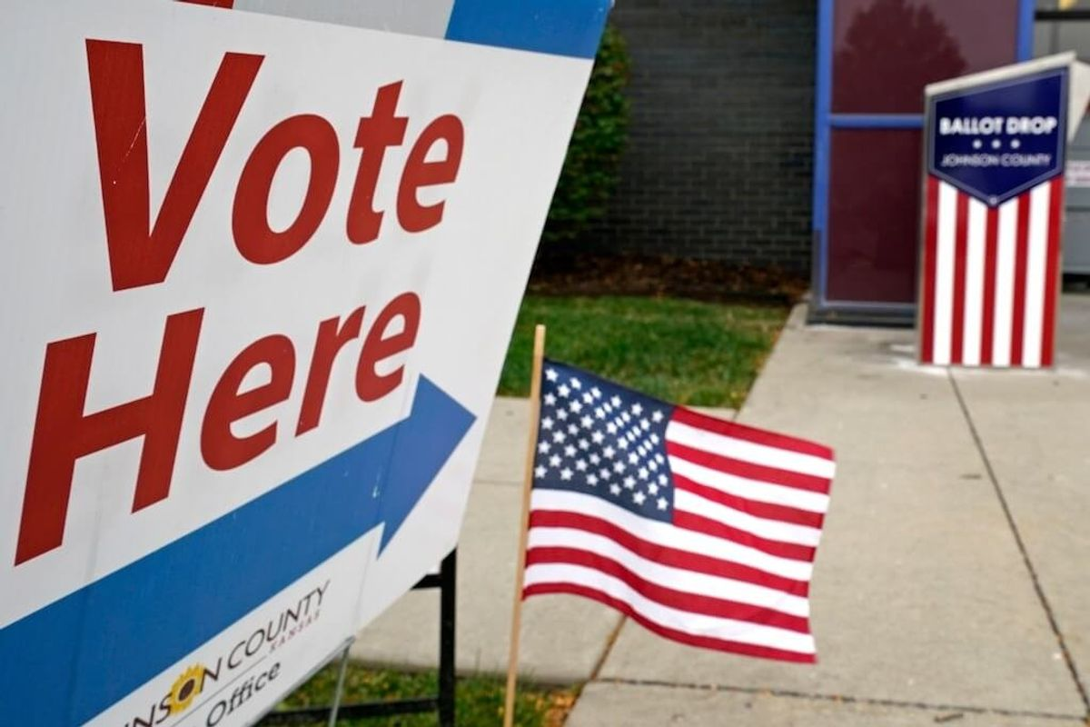 Motivations Vary as African Diaspora Vote in US Election
