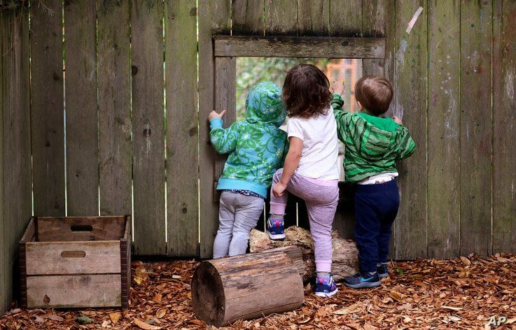In this photo taken Monday, Aug. 27, 2018, children peer out a screened window in the fence at the Wallingford Child Care…