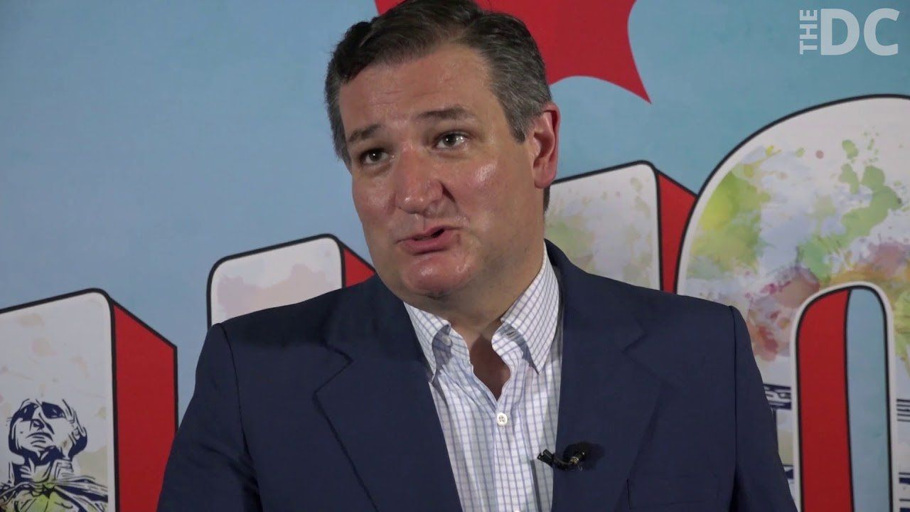 Ted Cruz defends his role in D'Souza's Presidential Pardon