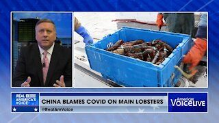 China Says U.S. Started Covid-19 - using Lobsters…?