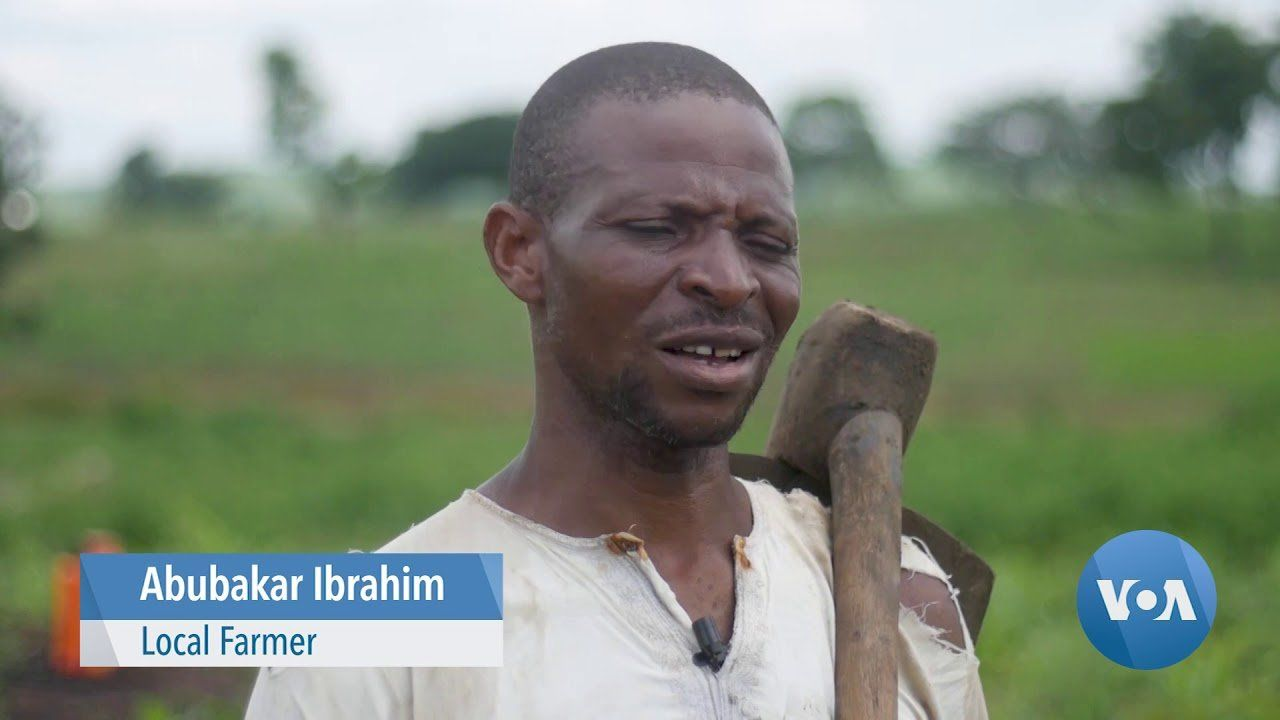 Soilless Farming in Nigeria an Alternative Amid Land Losses & Soil Degradation