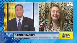 """Carole Baskin launches new """"Crypto Cat Currency"""""""