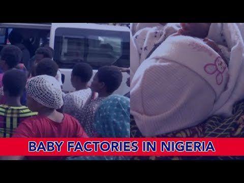 Baby Factories in Nigeria